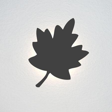 Ahornblatt, ähnlich dem in der kanadischen Nationalflagge.