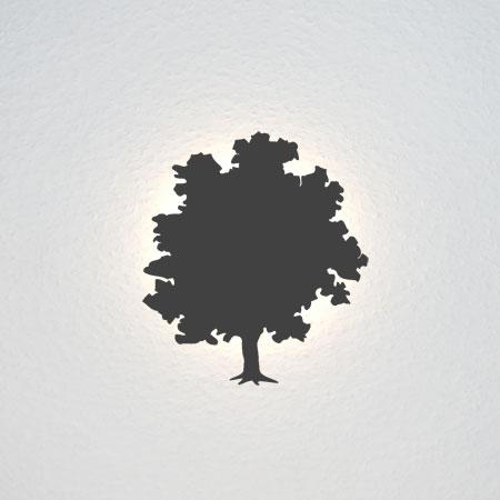 Umriss eines Eschenbaumes.