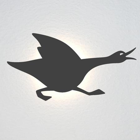 Running Erpel: Eine schnatternde Ente rennt nach rechts. Ist sie wütend? Oder auf der Flucht?