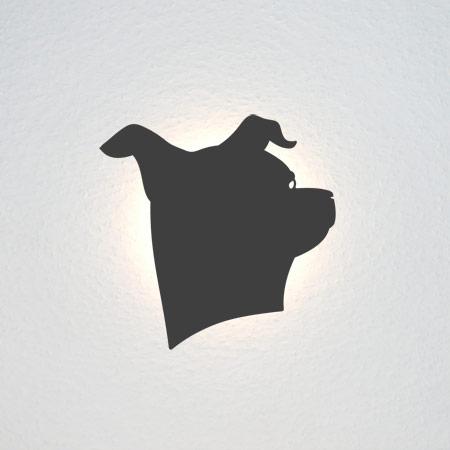 Portrait eines aufmerksamen Hundes.