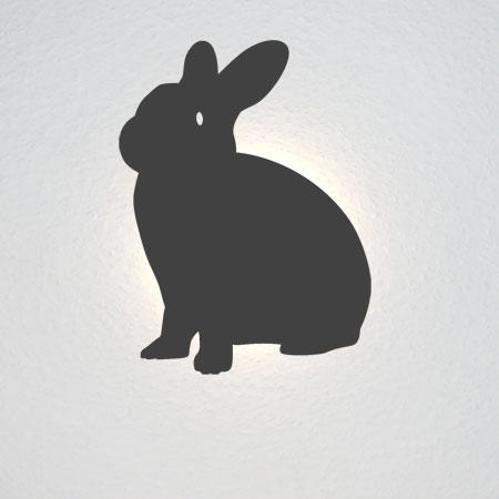 Das Kaninchen guckt seitlich in die Kamera (Halbprofil).